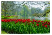 Keukenhof garden, Holland, Acrylic Print