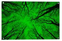 """Root or Branch – """"Green Positive Image"""" , Acrylic Print"""