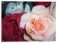 Fabric Roses, Acrylic Print