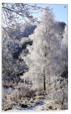 Crystal Tree, Acrylic Print
