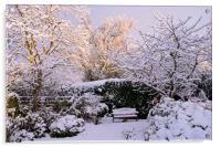 Garden in Snow, Acrylic Print