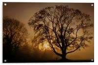 Humbleton Sunset 2011, Acrylic Print
