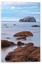 The Bass Rock, Acrylic Print