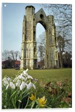Abbey and snowdrops, Acrylic Print