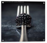 Blackberry, Acrylic Print