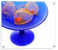 Chinese Lanterns in a Bowl, Acrylic Print