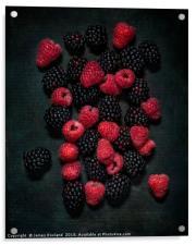 Blackberries & Raspberries, Acrylic Print