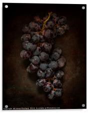 Dark Grapes, Acrylic Print