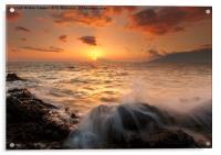 Splash of Paradise, Acrylic Print