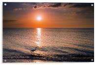 Sunset Fisherman, Acrylic Print