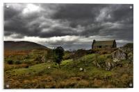 Connemara autumn, Acrylic Print