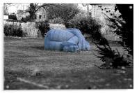 Body in the Garden, Acrylic Print