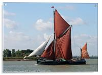 Thames Barge Cabby, Acrylic Print