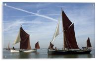 Maldon Barge Match 2010, Acrylic Print