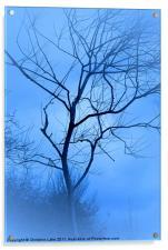 A shade of Blue, Acrylic Print