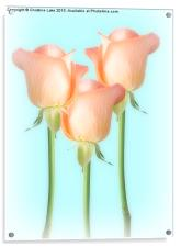 Simply Roses, Acrylic Print