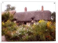 Cottage, Acrylic Print