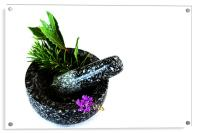 Herbs, Acrylic Print