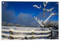 Winters Day, Acrylic Print