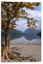 Lake Buttermere, Acrylic Print