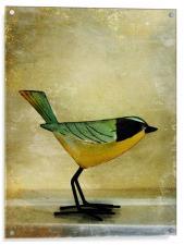 green jay, Acrylic Print