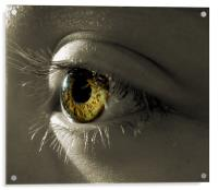 the eye of a child (hazel and green), Acrylic Print