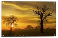 A Norfolk Sunrise, Acrylic Print