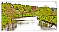 River Derwent at Chatsworth, Acrylic Print