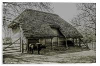 Cowfold Barn, Acrylic Print