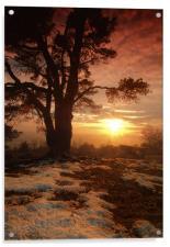 Sunset on Leith Hill, Acrylic Print