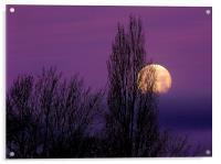 Abstract Moon, Acrylic Print