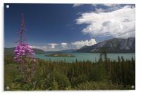Yukon Lake, Acrylic Print