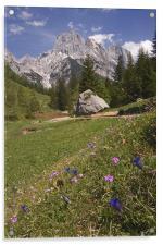 Alpine scenery, Acrylic Print
