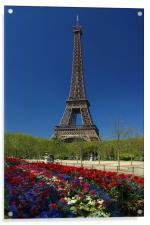Eiffel Tower, Acrylic Print