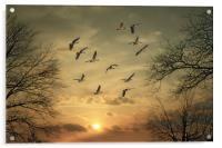 AUTUMN SUNSET, Acrylic Print