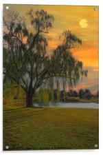 THE WIND AND THE WILLOWS, Acrylic Print