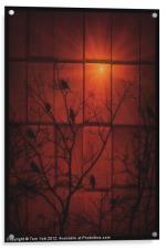 SCARLET SILHOUETTE, Acrylic Print