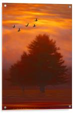 TREES OF AUTUMN, Acrylic Print