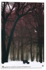 A LONELY WINTER DAY, Acrylic Print