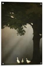 A MEETING UNDER THE TREE, Acrylic Print