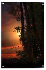 LATE AUGUST SUNSET, Acrylic Print