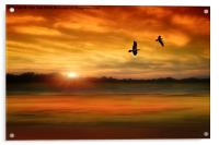 Sunset Serenity, Acrylic Print