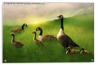 A Family Gathering, Acrylic Print