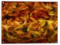 Fallen Leaves, Acrylic Print