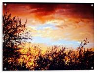 Sunset, Acrylic Print