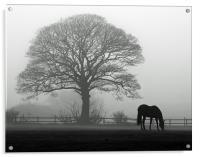 Horse in the Mist, Acrylic Print