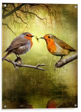 Robin Presents, Acrylic Print