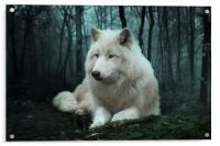 The White Wolf, Acrylic Print