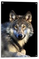 Jacob Wolf, Acrylic Print