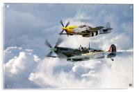 Flying Brothers, Acrylic Print